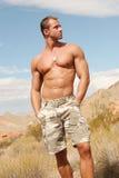 人肌肉红色岩石 库存照片