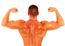 人肌肉 免版税库存照片