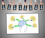 人脑在whiteboard的想法概念 免版税图库摄影
