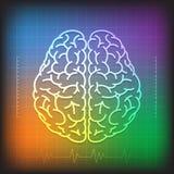 人脑概念有波浪图五颜六色的背景 免版税库存图片