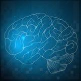 人脑的剪影 库存照片