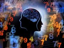 人脑的数字 图库摄影