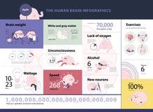 人脑infographics 免版税库存照片