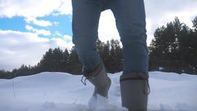人脚在深刻的雪冬天进来 缓慢的生活方式运动视频 有背包步行的人旅客在雪森林里 股票录像