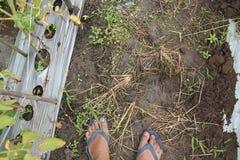 人脚的照片,版本6 免版税图库摄影