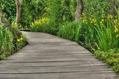 人行桥在Krka国家公园,克罗地亚, 免版税库存照片