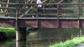 人行桥的妇女在河 股票录像