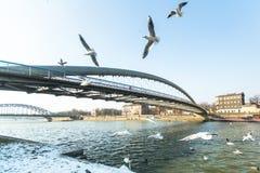 人行桥Ojca Bernatka -在维斯瓦河的桥梁 免版税库存照片