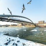 人行桥Ojca Bernatka -在维斯瓦河的桥梁 免版税库存图片