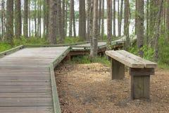 人行道和长凳在休息的森林里举办在湖的海岸的木道路 库存图片