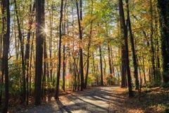 人行道在湖罗利, NC约翰逊公园  免版税库存照片
