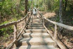 人行道的妇女穿过森林公园 免版税库存图片