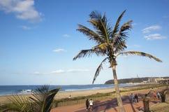 人行道,德班南非看法在海滩前的 免版税库存照片