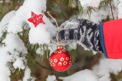 人装饰在冬天木头的一棵毛皮树 免版税库存图片