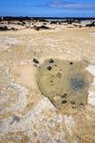 人西班牙小山黄色lanzar黑的岩石海滩螺旋  库存图片