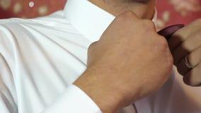 人调直弓领带接近  音乐家为表现做准备 人调直他的领带 穿着体面年轻 影视素材