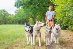 人走与小组多壳的狗本质上 免版税库存照片