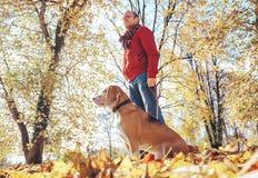 人走与狗在金黄秋天公园 免版税库存照片