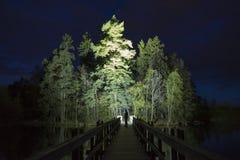人身分室外在发光与手电的黑暗的晚上 图库摄影