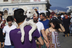 年轻人运载他的小狗 免版税库存照片