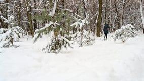 人速度滑雪在冬天森林里 影视素材