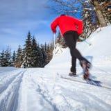 年轻人速度滑雪 免版税库存照片