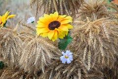 人造花和玉米穗的装饰 库存照片