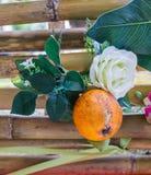 人造花是白色玫瑰,并且桔子是元素 库存图片