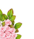 人造花由肥皂制成 图库摄影