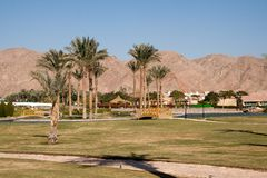 人造绿洲在旅馆。塔巴,埃及。 库存图片