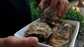 人采摘在一块白色板材的一只牡蛎 股票录像