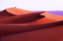 令人难忘的图象在摩洛哥沙漠 库存照片