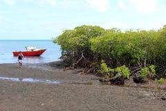 年轻人雇用带游人在他的红色小船,斐济, 2015年11月的天 免版税库存照片