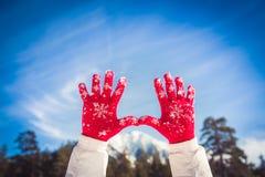 人雪冬天 库存照片