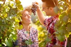 年轻人饲料他的女孩用葡萄 免版税库存照片