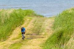 人骑自行车 库存图片