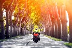 人骑马摩托车背面图通过树车道隧道  免版税图库摄影