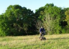 人骑马自行车在绿色草甸 库存图片