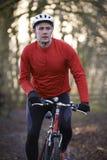 人骑马登山车通过森林地 免版税库存图片