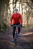 人骑马登山车通过森林地 免版税图库摄影