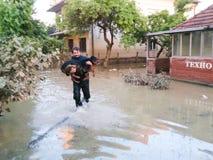人从中洪水拯救他的狗 库存图片