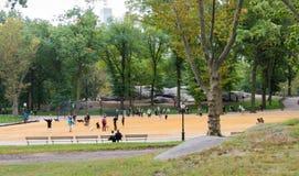 人们和狗在中央公园,纽约 免版税库存图片