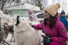 人们和狗在冬天名字的结尾的庆祝时 免版税库存照片