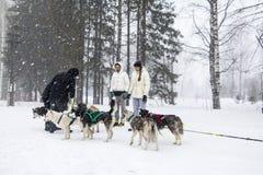 人们和狗在冬天名字的结尾的庆祝时 免版税图库摄影