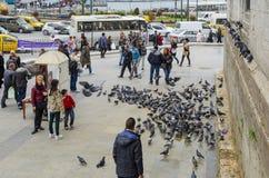 人们和鸽子在新的清真寺庭院附近 库存图片