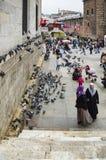 人们和鸽子在新的清真寺庭院附近 免版税图库摄影