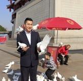 人们和鸽子 免版税库存照片