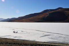 人们和冻湖 免版税库存图片