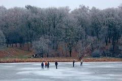 人们在一个冻湖滑冰在森林附近 免版税库存图片