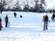 人们在中央公园享受在雪的雪橇乘驾 影视素材
